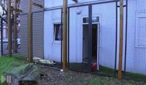 chambre des commerce strasbourg strasbourg et karlsruhe antenne chambre de commerce strasbourg en