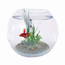 boule aquarium en verre équipée 25 cm de diamètre aquael