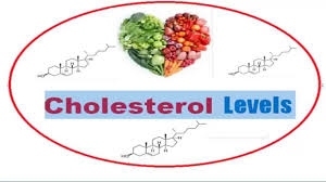 hdl cholesterol range normal cholesterol levels ldl hdl