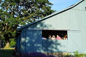 Book A Wine Tasting At The Secret Wine Barn - WineryHunt Oregon Archie Eats Kings Plant Barn Archies Journal By Michael Ngariki The Ref 2937 In Stanhoe Near Lynn Norfolk Photography Studio Great For Rustic Backdrops A Mansard Roof On A Barn Uk Property Kat Joes Wedding With Valley Ore Authentic Cottage Ra29798 Redawning New1jpg North Carolina Builders Dc