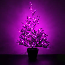 65 Ft Christmas Tree by Pink Led String Light 65ft
