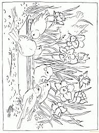 Awesome Nature Scene Coloring Page