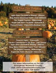 Free Pumpkin Patch Fort Collins by October 2013