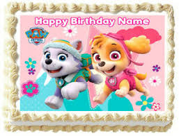 details zu and everest paw patrol edible cake topper image