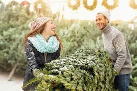 Wyckoff Christmas Tree Farm by Long Island Christmas Tree Farms