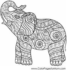 Gallery Of Perfect Animal Coloring Pages For Adults 40 With Additional Free Colouring