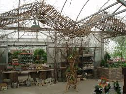 Building Upon An Old Plant Category