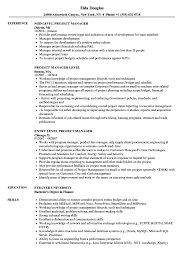 Download Project Manager Level Resume Sample As Image File