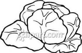 cabbage clipart black and white 6 300x193