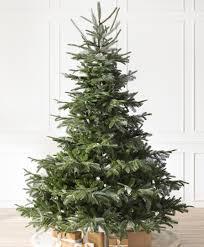 Buy 75 PreLit Slim Seafoam Ashley Spruce Christmas Tree Clear