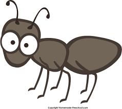 Ant Baby Simple Coloring Page Pages To View