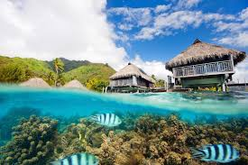 104 The Water Discus Underwater Hotel Sleeping With Fishes World S Best S Skyscanner S Travel Blog
