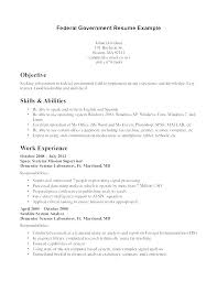 Resume For Government Jobs Current Templates Best Format Modern