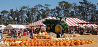 Underwood Farms Pumpkin Patch Hours by What You U0027re Doing This Weekend In La U2013 October 16 Cbs Los Angeles