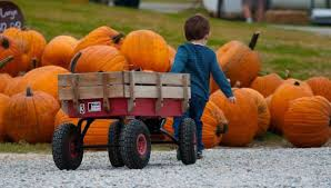 Best Pumpkin Patches Indianapolis by 9 Fall Activities In Indianapolis Indy U0027s Child Parenting Magazine