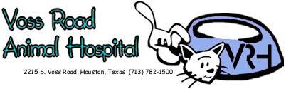 winrock animal clinic houston veterinarian in houston houston vet clinic