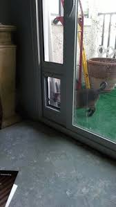 Best Pet Doors For Patio Doors by 51 Best Temporary Pet Doors Patio U0026 Window Inserts Images On