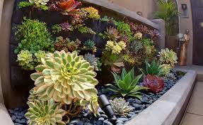 Super Idea Succulent Living Wall With Walls For Your Garden In San Diego Green