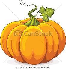 Autumn Pumpkin Illustration of Autumn Pumpkin