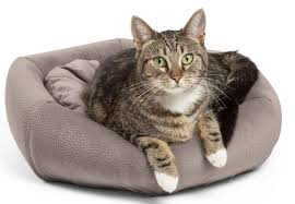 Cuddler Dog Bed by Best Friends By Sheri 4 In 1 Kitty Pouch Cuddler Ilan Cat Bed