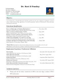 Sample Resume Format For Freshers Lecturer In Engineering College Fresher Brilliant Ideas Of Cute S Br