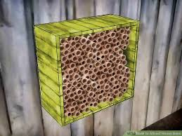 Attracting Insects To Your Garden by How To Attract Honey Bees 11 Steps With Pictures Wikihow
