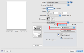 Click The Advanced Tab And Choose Grayscale In Color
