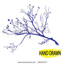 Dry branch Tree branch without leaves Drawing by hand in vintage style drawing