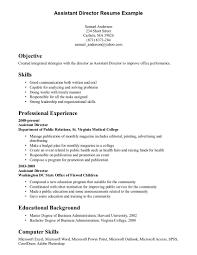 Resume Examples Skills Profile