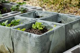 Milk Crate Planters Gardening With Your Kids