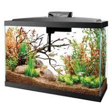 top fin皰 20 gallon glass aquarium petsmart 12 1 2 l x 30 1 4 w x