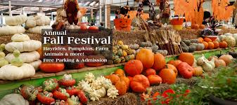 Spring Hope Pumpkin Festival 2014 by Fall Family Festival Returns To Hicks Nurseries