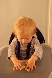 Svan Signet High Chair Cushion by Svan Signet High Chair Real Mom Reviews