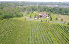 100 New Farm Houses Clarence Blueberry Farms New Owner Wants To Build Houses There