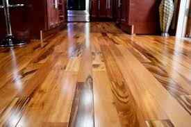 brilliant brazilian hardwood floor how to care for brazilian