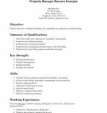 Examples Of Skills In Resumes Good Resume Qualifications Computer Example Is One The Best Idea For