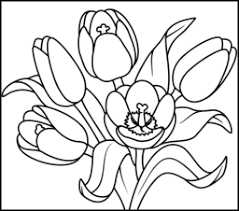 Tulip Coloring Page Printables Apps For Kids