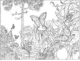 Coloring Pages Secret Garden Enchanted Forest Other
