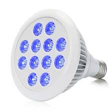 esavebulbs 24w blue led e27 e26 grow light bulb for indoor