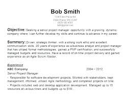 Resume Overview Examples Opening Statement