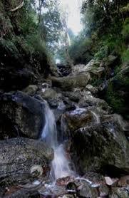Gorge by Skeleton Gorge Hike Www Capemountainhikingandrunningtours Com