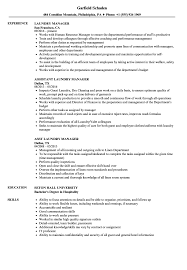 Download Laundry Manager Resume Sample As Image File