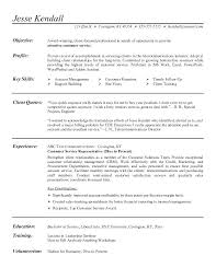 Resume Profile Examples For It Professional With Objective Samples Customer Service