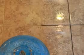 carpet cleaning az holts carpet cleaning