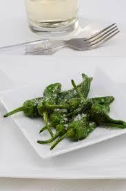 cuisiner les poivrons verts poivrons verts frits pimientos padron cuisine espagnole image