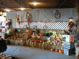 Kohala Pumpkin Patch Hours by 29 Best Ideas For Pumpkin Patch Images On Pinterest Corn Maze