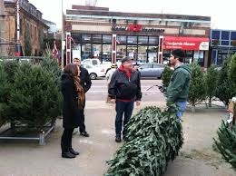 Christmas Tree Shop Syracuse Ny by Christmas Tree Store Hours Christmas Tree Locations In Nj New