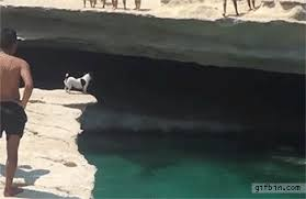 Cliff Dive GIFs