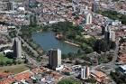 imagem de Araras São Paulo n-11