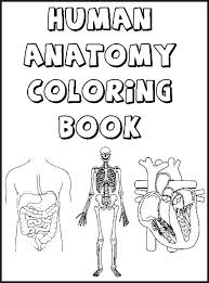 Free Anatomy Coloring Book The Human Body Teaching Resources
